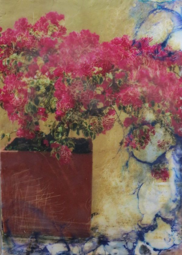 Using PanPastel for photo Encaustic technique - Shary Bartlett