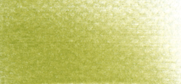 Bright Yellow Green Shade Swatch